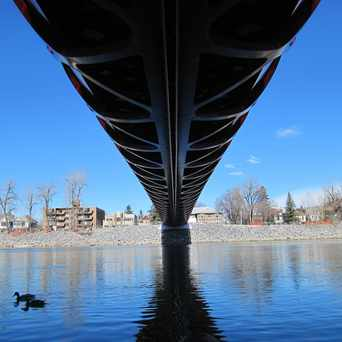Photo of Peace Bridge in Calgary