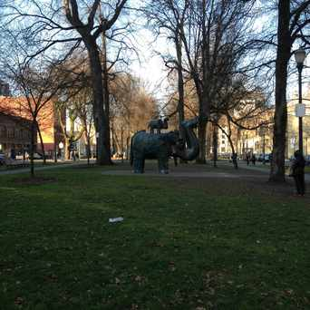 Photo of Bronze Elephant Sculpture in Pearl, Portland