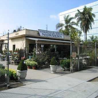 Photo of Yamaguchi Bonsai Nursery in West Los Angeles, Los Angeles