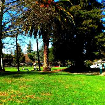 Photo of Johnson Park in Palo Alto