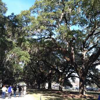 Photo of Boone Hall Plantation & Gardens in Mount Pleasant
