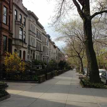 Photo of 5th Street in Park Slope, New York