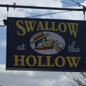 Photo of Swallow At the Hollow in Chinquapin Park - Belvedere, Baltimore