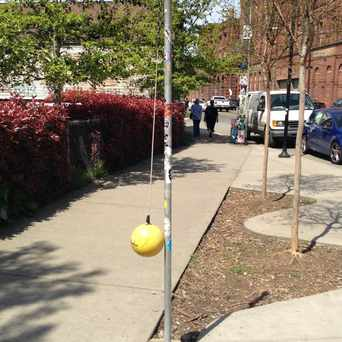 Photo of Tetherballl On The Street in Georgetown, Seattle