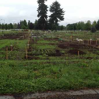 Photo of Community Garden in Central Park, Vancouver