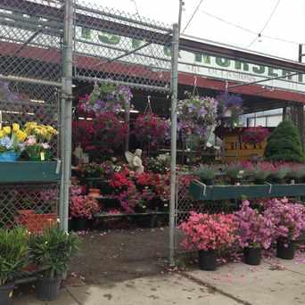 Photo of Florist And Nursery in Lower Washington - Mount Hope, Boston