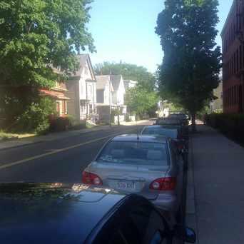 Photo of Putnam Avenue, Cambridge Ma in Riverside, Cambridge