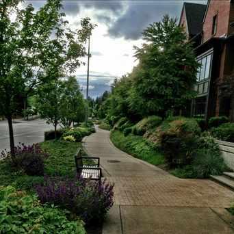 Photo of NE 12th Street in Northwest Bellevue, Bellevue