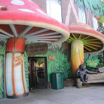 Photo of Rainforest Cafe in Near North Side, Chicago