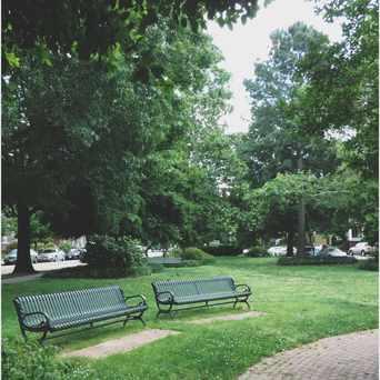 Photo of Meadow Park in The Fan, Richmond