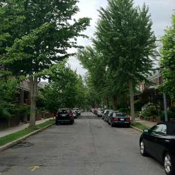 Photo of Tree-Line Neighborhood Scene in Glover Park, Washington D.C.