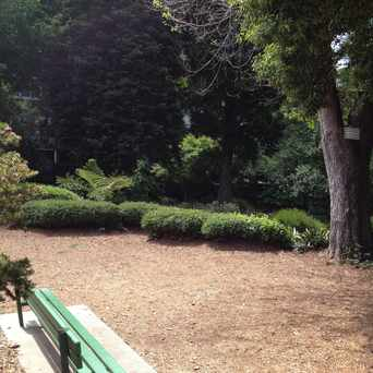 Photo of Allyne Park in Union Street, San Francisco