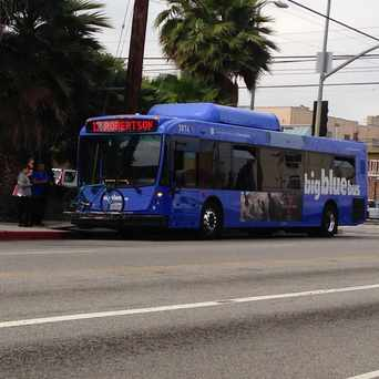 Photo of Big Blue Bus - Palms in Mar Vista, Los Angeles
