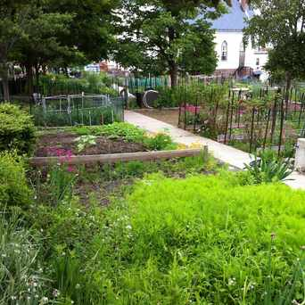 Photo of Mission Hill Community Garden in Mission Hill, Boston