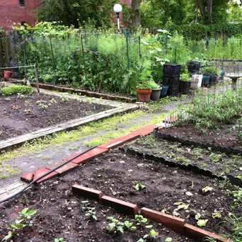 Photo of Saranac New Castle Garden in Lower Roxbury, Boston