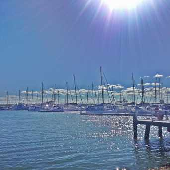 Photo of Scarborough Marina in Brisbane