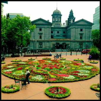 Photo of Pioneer Courthouse Square Farmers Market in Downtown, Portland
