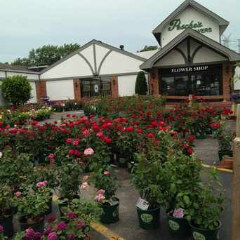Photo of Pesche's Flowers in Des Plaines