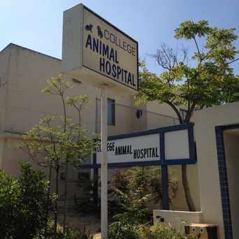 Photo of College Animal Hospital in El Cerrito, San Diego