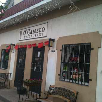 Photo of O Camelo Restaurant in Hartford