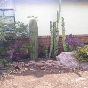 Photo of Garden in Tempe