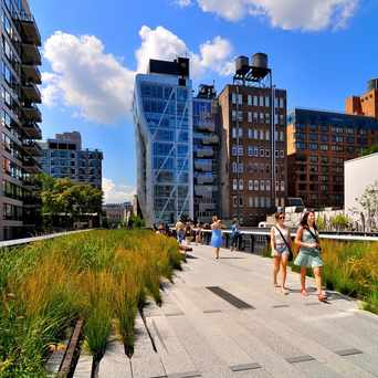 Photo of The High Line in New York