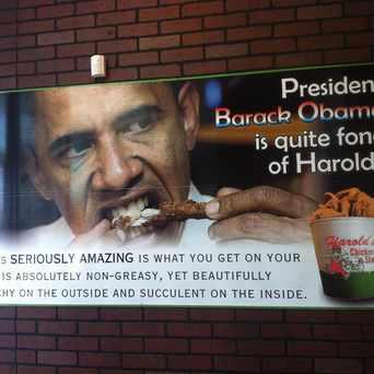 Photo of Harold's Chicken in Bronzeville, Chicago