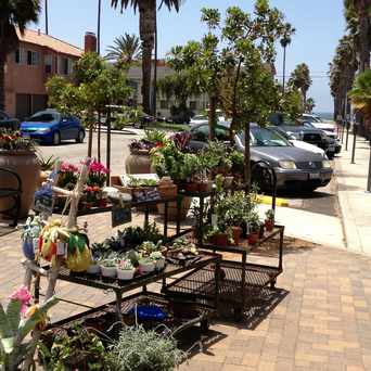 Photo of #riviera Village #soil in Redondo Beach