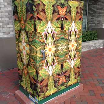Photo of Outdoor Art in Downtown, Fort Lauderdale