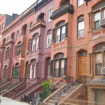 South Bronx New York Apartments for Rent and Rentals ...