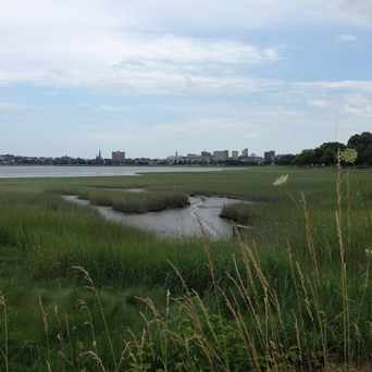 Photo of Baxter Blvd Marshes in Portland