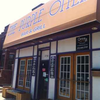 Photo of Purple Otter in DePaul, Chicago