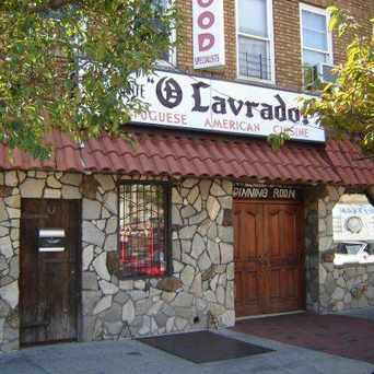 Photo of O Lavrador Restaurant & Bar Est. 1981 in Jamaica, New York
