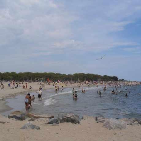 Photo of Manhattan Beach Swimming in Manhattan Beach, New York