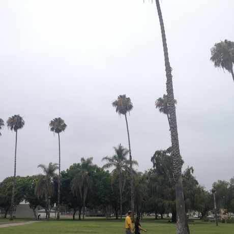 Photo of Memorial Park in Bristol Manor, Santa Ana