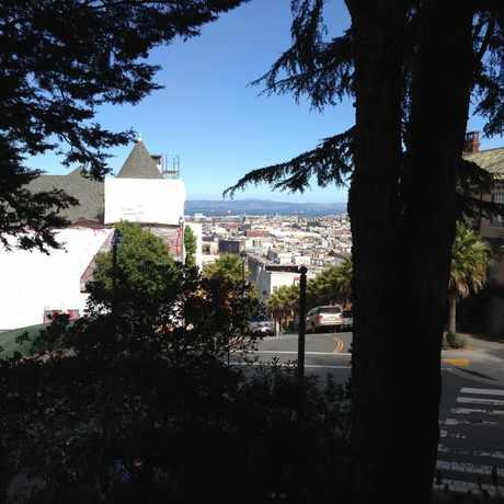 Photo of Buena Vista Park in Buena Vista, San Francisco