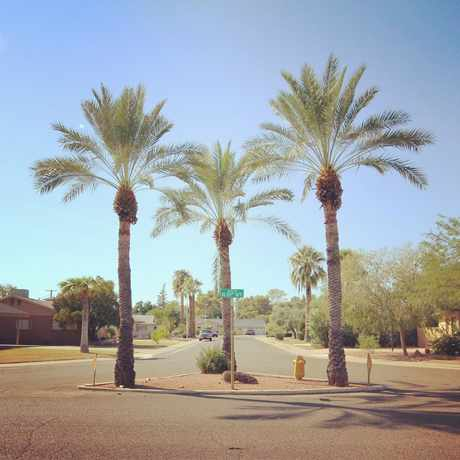 Photo of South Scottsdale in Scottsdale