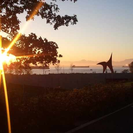 Photo of Olympic Sculpture Park in Belltown, Seattle