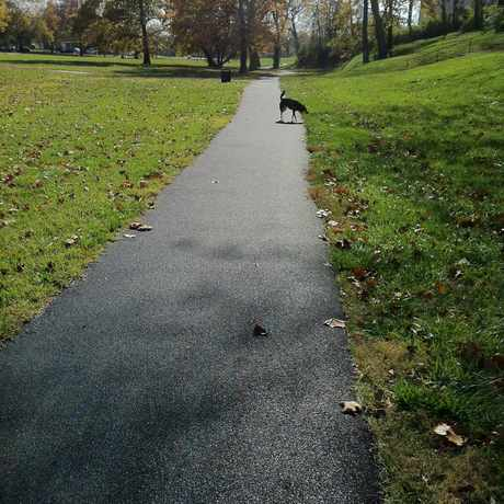 Photo of Gillham Park walking trail in Kansas City