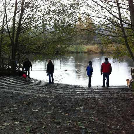 Photo of Marymoor Off-leash Dog Park in Southeast Redmond, Redmond
