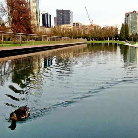 Photo of Downtown Park in West Bellevue, Bellevue