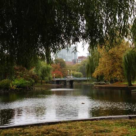 Photo of Boston Public Garden in Beacon Hill, Boston