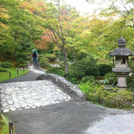 Photo of Japanese Garden at Washington Park Arboretum in Madison Valley, Seattle