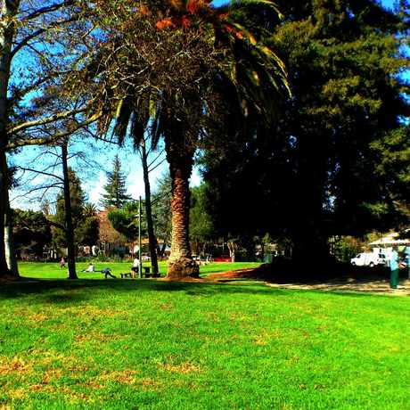Photo of Johnson Park in Downtown North, Palo Alto