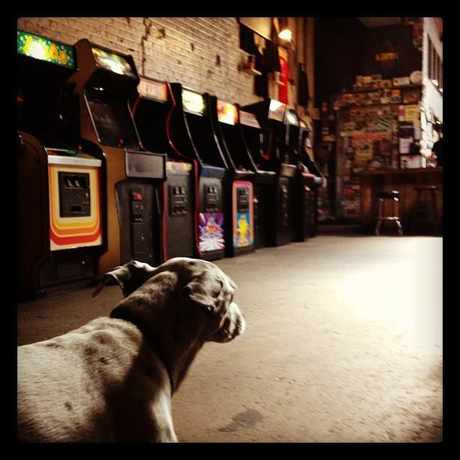 Photo of Barcade in Williamsburg, New York