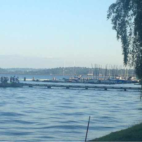 Photo of T Dock in Leschi, Seattle