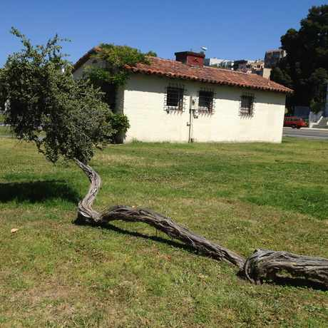 Photo of Lake Merritt Garden Center in Adams Point, Oakland