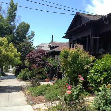 Photo of Rockridge Neighborhood in Shafter, Oakland
