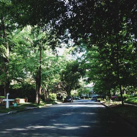 Photo of Shade Of Garden Hills in Garden Hills, Atlanta