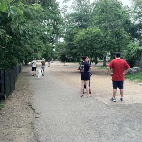 Photo of Shirlington Dog Park in Nauck, Arlington